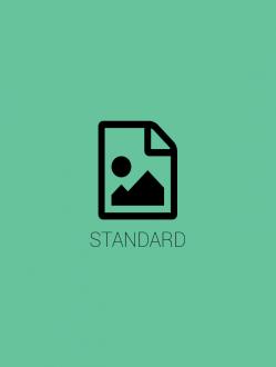Standard (24hr)